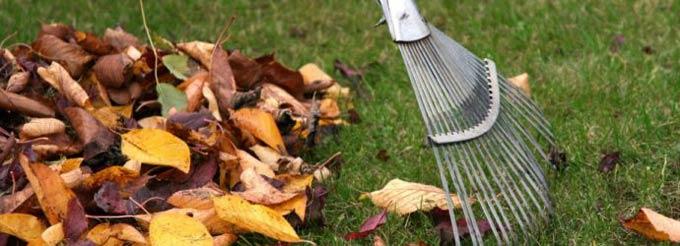 как сделать перегной из листьев