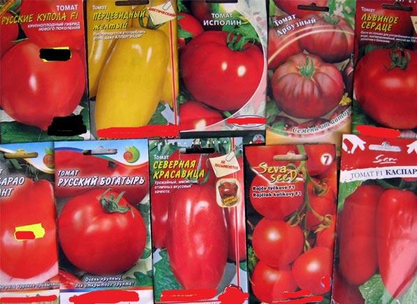 семена томатов для гидропоники