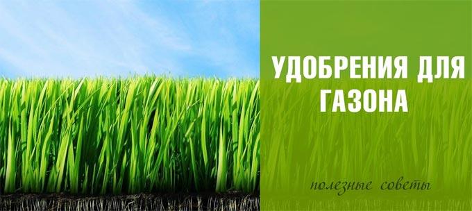 удобрение для газонной травы