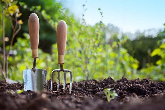 как вносить фосфорные удобрения