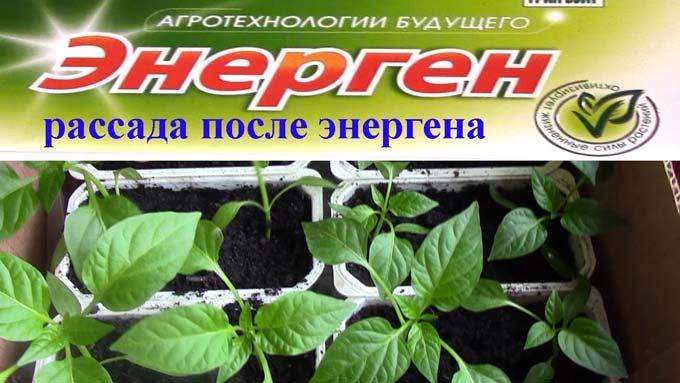 энерген для растений