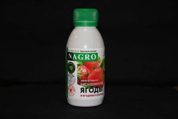 Nagro для ягод