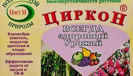 Действие препарата Циркон на растения