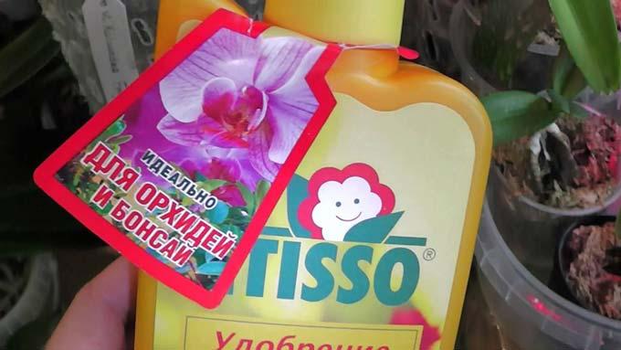 Etisso для орхидей