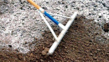 Применение извести для раскисления почвы