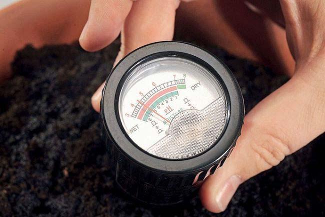 уровень pH почвы