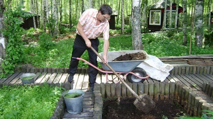 как использовать шелуху от семечек в огороде