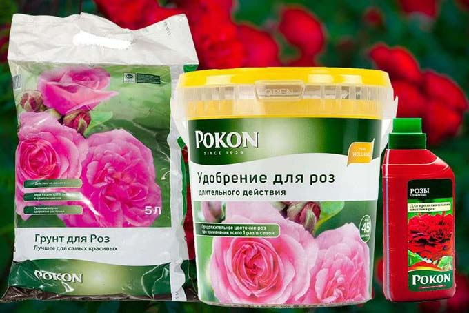 Pokon для роз