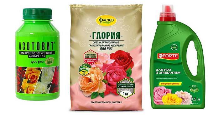 Глория для роз