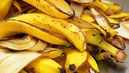 Банановая кожура как удобрение — удивительные способности фрукта