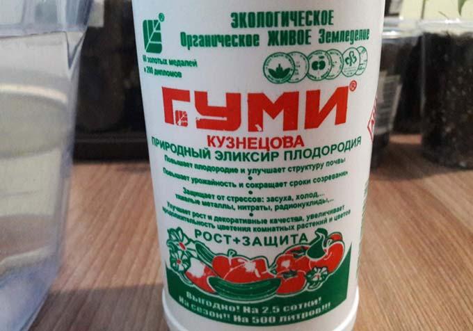 Гуми Кузнецова