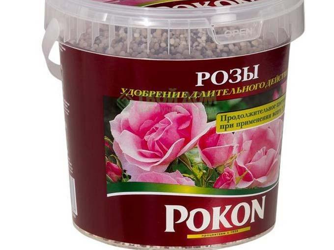 чем подкармливать розы