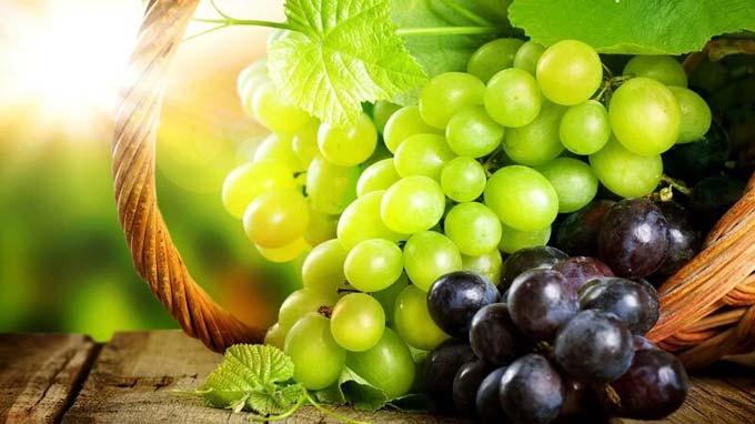 подкормка винограда осенью