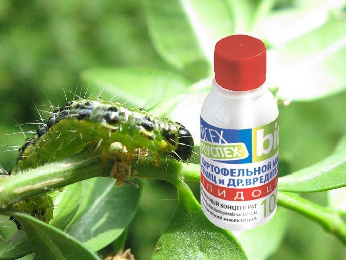 лепидоцид от гусениц