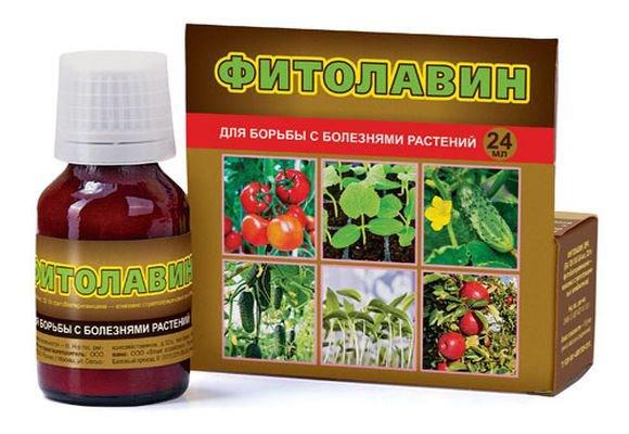 препарат против болезней растений