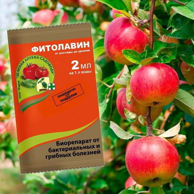 фитолавин для томатов