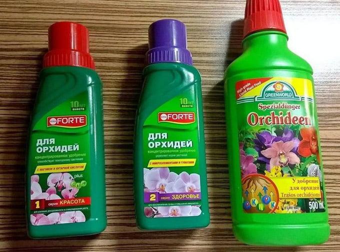 Forte для орхидей