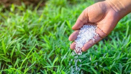 Эффективность нитрата натрия как удобрения для сельскохозяйственных культур